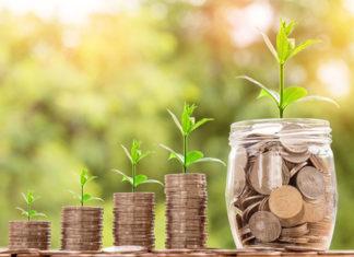 Jak będą inwestowane środki w ramach PPK?